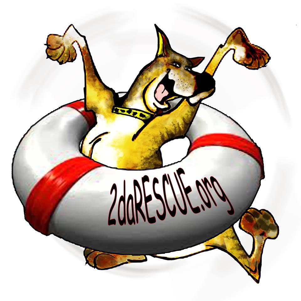 2DaRescue Logo